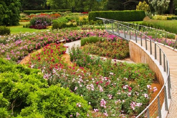 The Savill Garden
