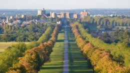 Six reasons why Windsor and Maidenhead is a fantastic place to live6